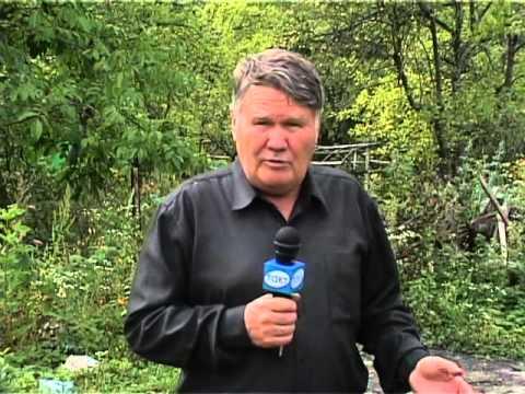 Валерий Панов: На каком расстоянии сажать деревья?