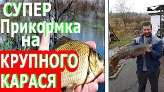 Прикормка на КРУПНОГО карася//The best recipe for bait on a large crucian