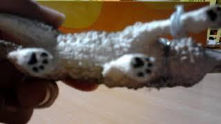 Моя коллекция фигурок собак.