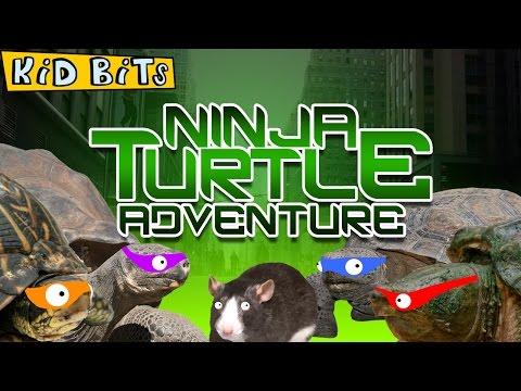 Ninja Turtle Adventure - Kid Bits
