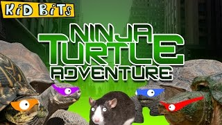 Ninja Turtle Adventure - Kid Bits