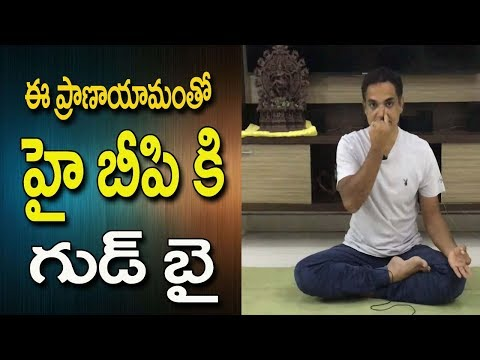 Blood Pressure Control Yoga  | Yoga For Blood Pressure Control | Blood Pressure | Yoga In Telugu