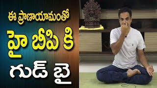 Blood Pressure Control Yoga    Yoga For Blood Pressure Control   Blood Pressure   Yoga In Telugu