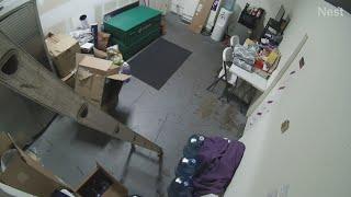 Surveillance video: Looters strike Metro PCS store