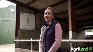 The importance of vaccination as part of a herd health plan
