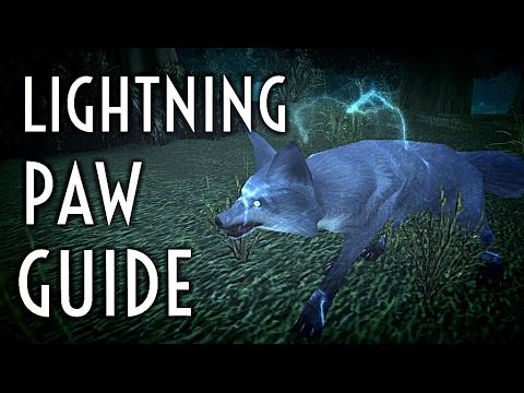 Wow Guide Lightning Paw Spirit Beast Hunter Pet Youtube