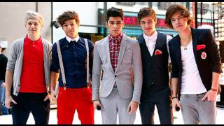 1D- Little Things (Official Audio)