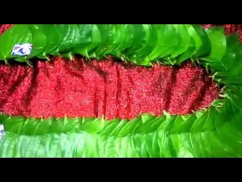 வெற்றிலை மாலை    Betel Leaf Garland for Hanuman