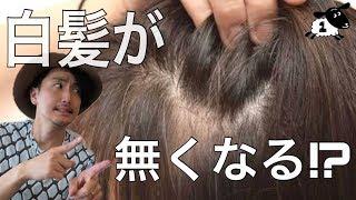 【白髪】美容師に聞け!!白髪が無くなる⁉︎ サイトウシローの30代からの髪のお悩みレスキュー!!