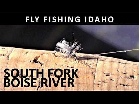 Fly Fishing Idaho South Fork Boise River November