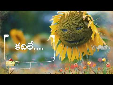 Oka Chinni Navve Navvi Song lyrics for WhatsApp