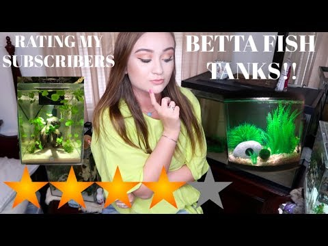 RATING MY SUBSCRIBERS BETTA FISH TANKS!! | ItsAnnaLouise