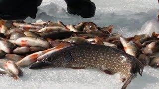 Ловля рыбы зимой(ПОДПИСЫВАЙТЕСЬ на канал - https://www.youtube.com/user/sappilot74 ДОБАВЛЯЕМСЯ в друзья http://vk.com/id348535885 ЗАДАЕМ ВОПРОСЫ в группе., 2014-03-12T14:38:31.000Z)