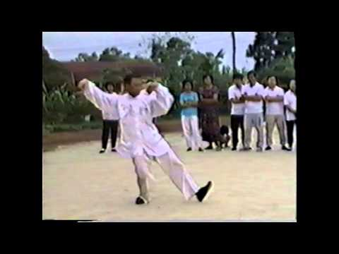 1991 Dong style Taijiquan