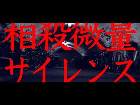 ROTTENGRAFFTY「相殺微量サイレンス」Music Video