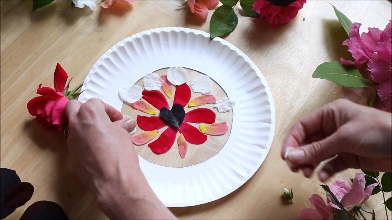 flower petal suncatcher  nature art for kids