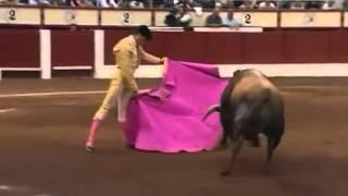 Смешное видео про быка(, 2016-02-09T10:59:36.000Z)