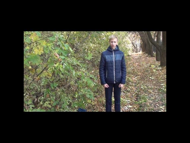 Изображение предпросмотра прочтения – МаньковскийИван читает произведение «Осенний день был тускл и скуден…» В.Я.Брюсова