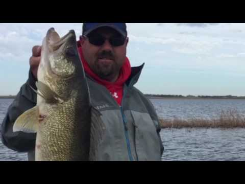 Devils Lake Fishing Guide - Guided Trips with Mike Peluso