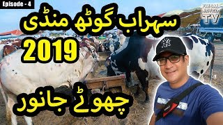 COW MANDI SOHRAB GOTH 2019 KARACHI | Episode – 4 | Video in URDU/HINDI