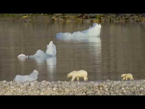 Spitsbergen (short)