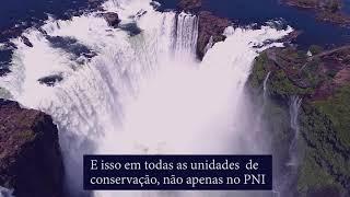 Em defesa do Parque Nacional do Iguaçu