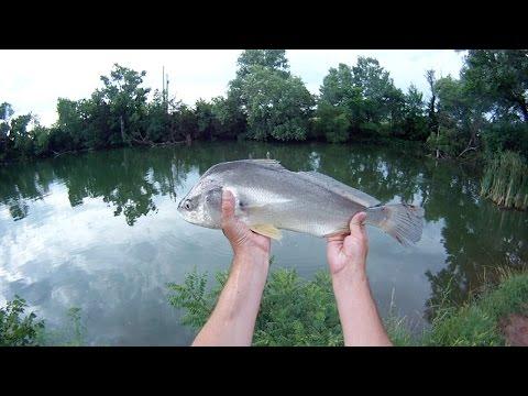 Bank Fishing Lake Afton, Ks.