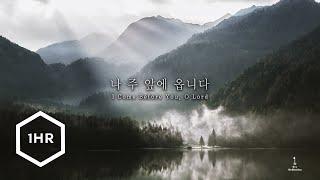 [1시간] 나 주 앞에 옵니다 (I Come Before You, O Lord) Piano Cover