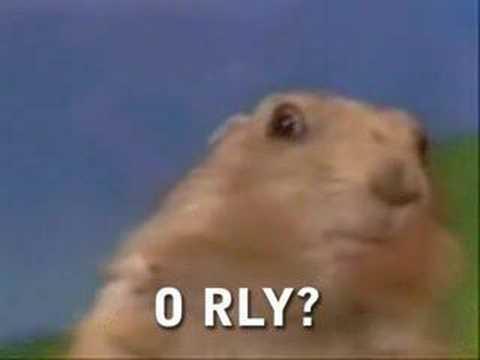Drama Prairie Dog, O RLY?!
