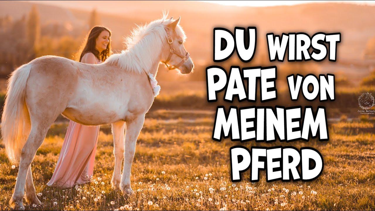 Du kannst Pate werden für mein gewonnenes Pferd Wunschtraum ♥