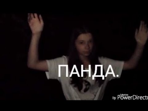 Клип для Nepeta 22.Песня «ПАНДА.»
