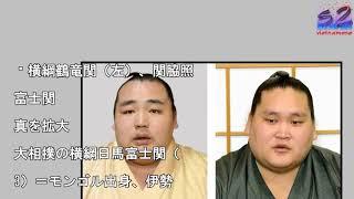 鶴竜、照ノ富士を事情聴取 日馬暴行問題、危機管理委. 横綱鶴竜関(左)...