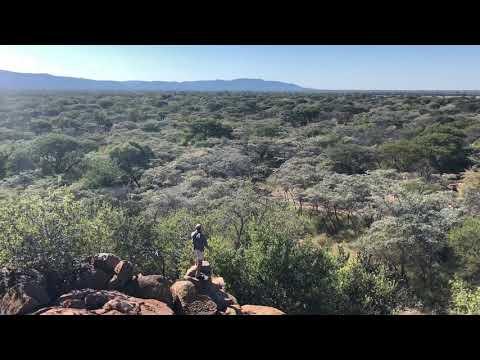 Gateway To Africa Safaris, Cape Eland Hunt. Hunting Africa