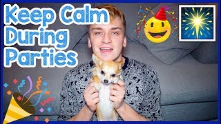 How To Keep Your Dog Calm During a House Party! Tips To Make Sure Your Dog Is Happy On NYE Party!