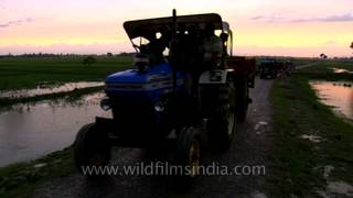 Farmers return from work riding tractors & trucks in Uttar Pradesh