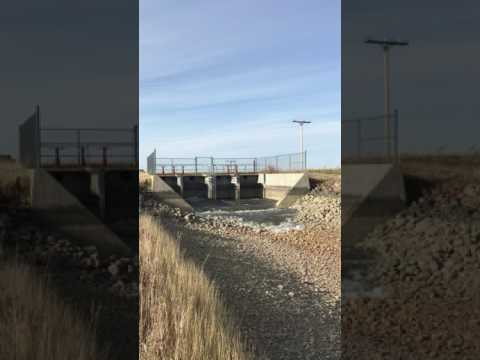 Water flows into the M1 Canal for the first time in 2017