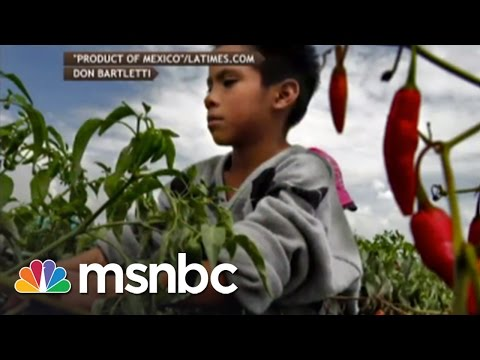 Horrifying Conditions For Farmer Workers Exposed | msnbc