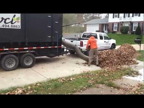 Leaf Removal Service & Leaf Collection