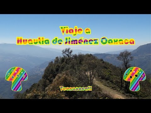 Viaje a Huautla de Jiménez Oaxaca, Teonanacatl
