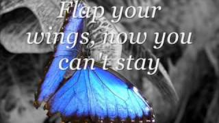 Miley Cyrus ft. Billy Ray Cyrus- Butterfly Fly Away ( with Lyrics)