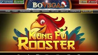 BoVegas Casino - Same Day Payout Online Casino For USA Players + $5500 Welcome Bonus