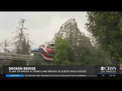 Delana's Dish - Trying to show kids it was safe, Dad breaks bridge at Disneyland