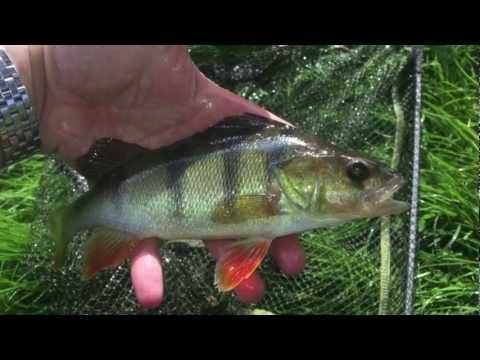 hook up bait & tackle