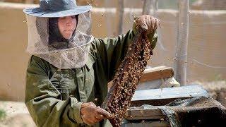 Afghan Schoolgirl Into an Entrepreneur