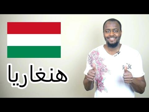 الدراسة في المجر : الايجابيات والسلبيات ® | منحة المجرالدراسية