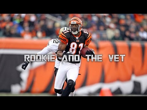 "Terrell Owens ""T.O""  Bengals Highlights (HD)"