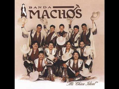Banda Machos - Usted