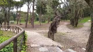 Pasquetta 2019: al parco comunale di Termoli