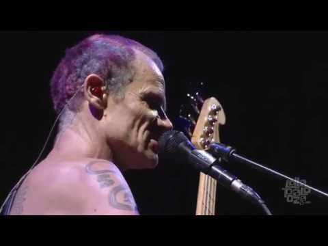 Red Hot Chili Peppers - I Would For You (Jane's Addiction cover) - Lollapalooza 2016