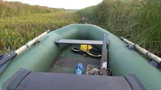 Охота на утку осенью охотники атакуют